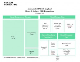 curzon consulting chronic kidney disease cost analysis