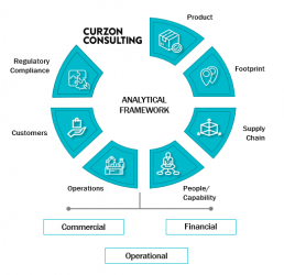 Curzon Consulting analytical framework cost optimisation